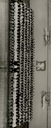 50 years ago class photo